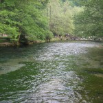 Springs of Bosnia river